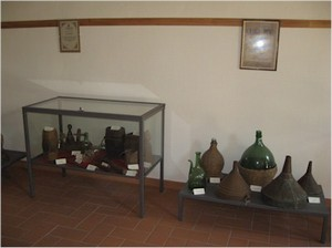 Museo Vite e vino